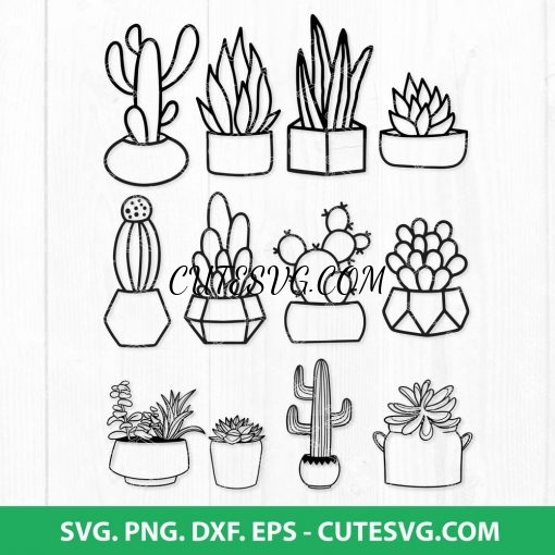 Cactus Svg