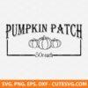 Pumpkin Patch SVG File